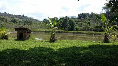 Fazenda Em Zona Rural, Guapimirim/rj De 2500m² 4 Quartos À Venda Por R$ 900.000,00 - Fa203458