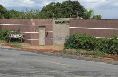 Chácara À Venda Em Vila Bela Vista - Ch245588