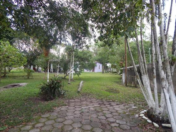 Sítio Com 10.000 M² Em Peruíbe A Venda