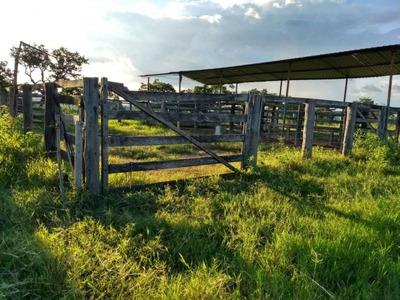 Fazenda Para Venda Em Caldas Novas - 206