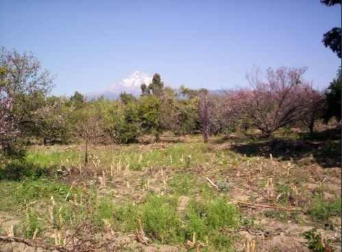 Cuautla Corredor Ecoturístico Terreno Plano 45,742 M2 K75.5