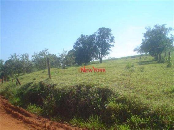 Sítio Rural À Venda, Área Rural De São Carlos, São Carlos - Si0019. - Si0019