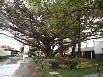 Apartamento Em Camaquã Com 3 Dormitórios - Lu273459