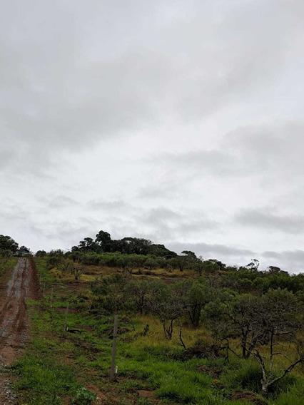 Terrenos Em Ibiúna, Acesso Fácil B