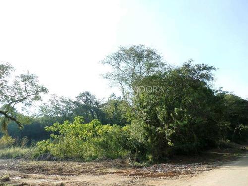 Imagem 1 de 10 de Terreno - Belem Novo - Ref: 226051 - V-226051