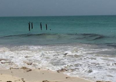 Predio Rustico En Venta, Playa Mujeres, Quintana Roo