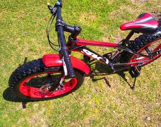Bicicleta Niño Fat Bike Rodado 20