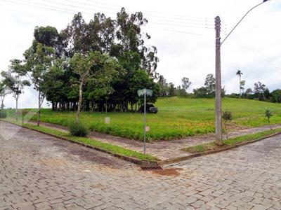 Terreno - Sao Jose - Ref: 210752 - V-210752