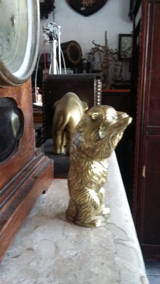 Lindo Urso Em Bronze Antigo 703 Gramas