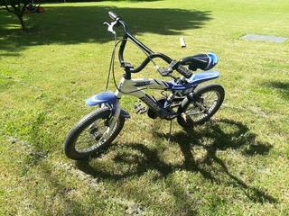 Bicicleta Marca Raleigh Rodado 16 De Aluminio