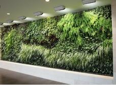 Jardines Verticales Naturalez