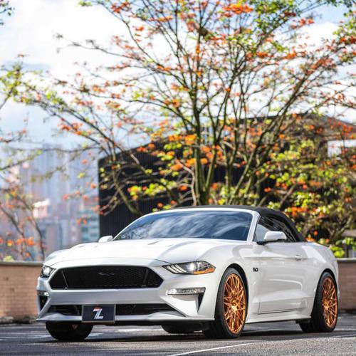 Ford Mustang 2019 5.0 Mustanggt