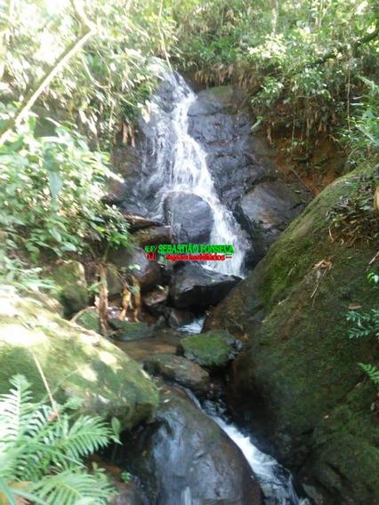 Sitio Com Nascente - Cachoeira Em São Francisco Xavier - 1475