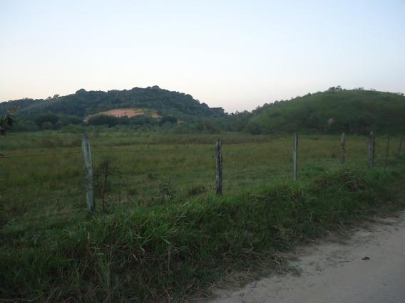Guapimirim Estr. Rio Friburgo Fazenda 111 Hectares 50 Min Rj