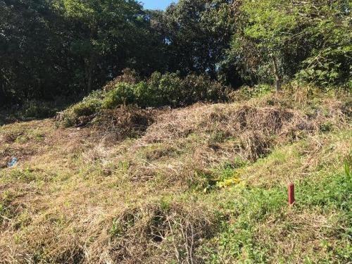 Terreno Para Chácara À Venda Em Itanhaém, 2.200 M²
