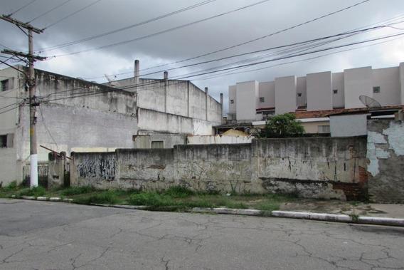 Terreno À Venda, 400 M² Por R$ 1.030.000 - Vila Prudente - São Paulo/sp - Te0040