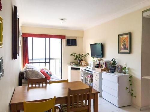 Imagem 1 de 14 de Apartamento À Venda, 1 Quarto, 1 Vaga, Laranjeiras - Rio De Janeiro/rj - 545