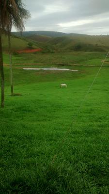 Fazenda 10 Alqueirão , Entre Joaima E Fonteira Dos Vales Mg