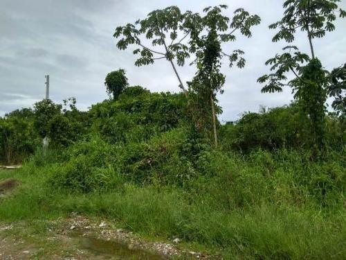 Terreno No Litoral, Com 260 M², Em Itanhaém/sp 5189-pc