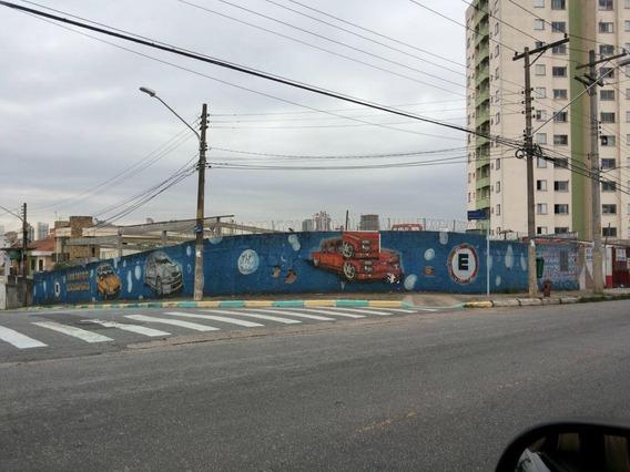 Terreno Padrão Em São Paulo - Sp - Te0028_prst