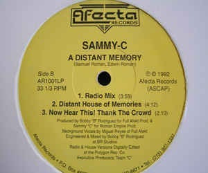 Sammy-c ¿ A Distant Memory 12 (freestyle)