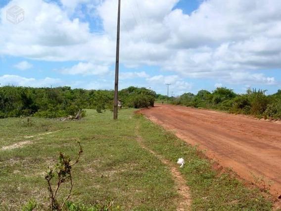 Praia De São MiguelTerreno Medindo 129 Hectares Com 440,00m De Beira Mar