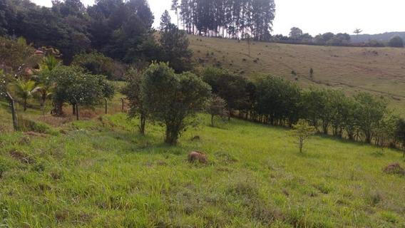 Terreno Rural À Venda, Fazenda Marajoara, Campo Limpo Paulista. Te0199 - Te0199