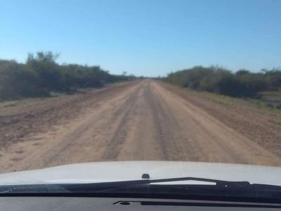 Valor De Hectárea Venta De Campo Ganadero En Corrientes