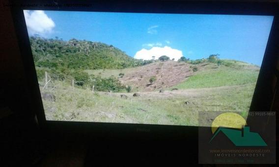 Sítio / Chácara Para Venda Em Joaquim Gomes, Zona Rural - Fz-033_1-1128265