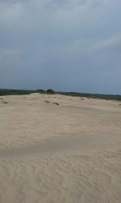 Terreno Con Playa,golfo De México