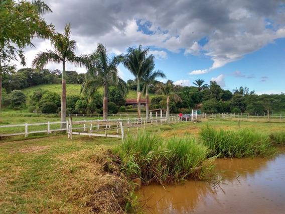 Fazenda Em Brumadinho Com 90 Ha - Ótima Casa- 02 Represas - Água Por Gravidade- Pastagem - Curral . - 57