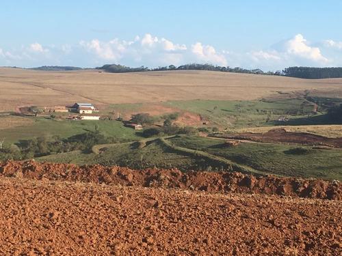 Fazenda Entre Itaberá E Taquarituba - São Paulo - Fa00104 - 68869029