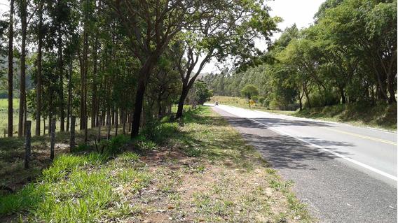 Sitio Em Lambari-mg