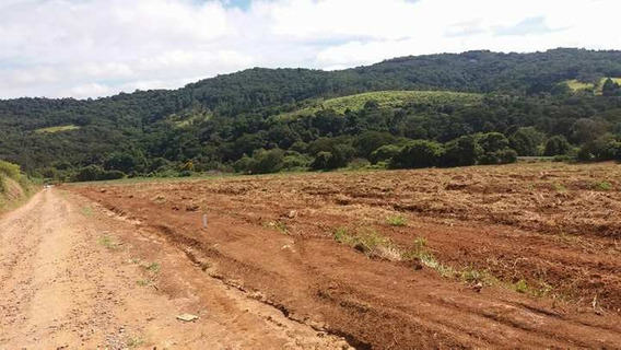 J Terreno 1.000 M2 Limpos, 100% Plaino Pronto Para Construir