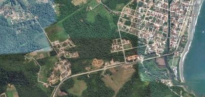 Área Entre Caraguatatuba E Ubatuba - 816