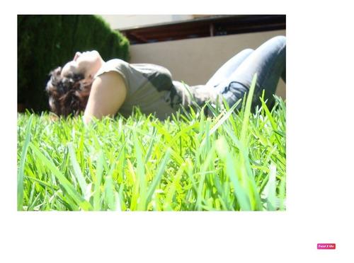 Raigras Anual 1 Kg - Cesped Ingles - Rye Grass - Ryegrass