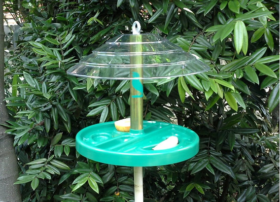 Comedouro Para Pássaros Freedom Light + Haste Para Fixação