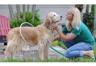 Bañador Aspersor Circular Para Mascotas Perros Gatos 360