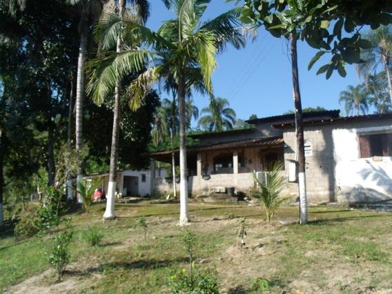 Sítio Rural À Venda, Braço Grande, Miracatu. - Si0001