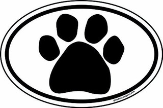 Imagine Este 6inch Por 4inch Oval Paw Iman Para Coche Color