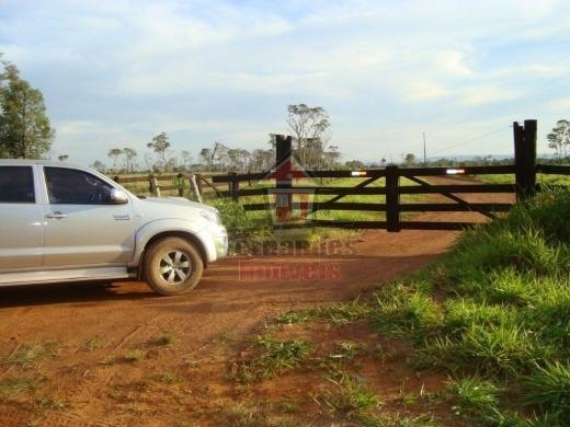Fazenda Rural À Venda Nova Lacerda -mt Fa0061. - Fa0061