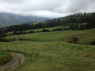 Se Vende Finca Ganadera Tulua Valle