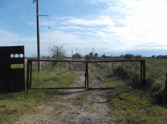 Terreno Rustico En Venta Estación Manuel, Tam.