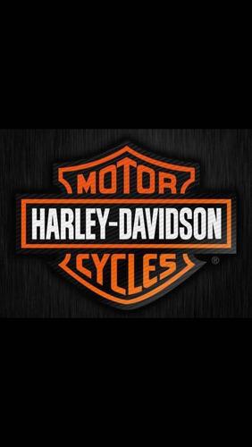 Imagem 1 de 14 de Harley Davidson  Vrod Muscle