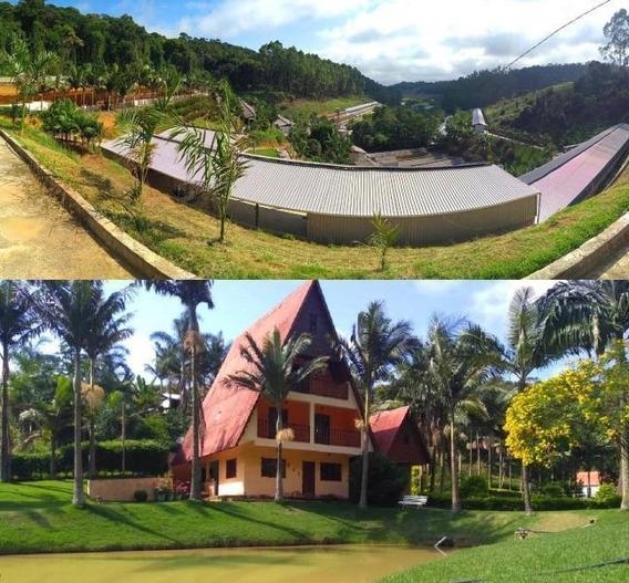 Granja Para Venda Em Santa Maria De Jetibá, Centro, 6 Dormitórios, 3 Suítes, 7 Banheiros, 2 Vagas - 101140