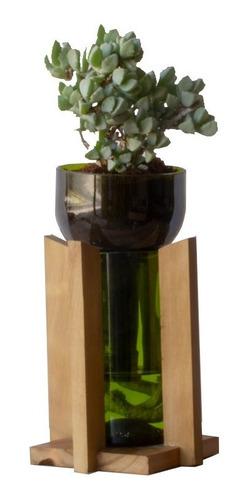 Suculenta Little Plant 24 Con Soporte, Maceta Autorregante