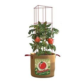 Panacea Products Tomates 20 Galones Grow Bag Folding 42 Cage