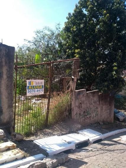 Terreno Comercial Para Locação, Vila Moraes, São Paulo. - Te0028