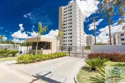Apartamento A Venda Vida Ecopark, Emaús