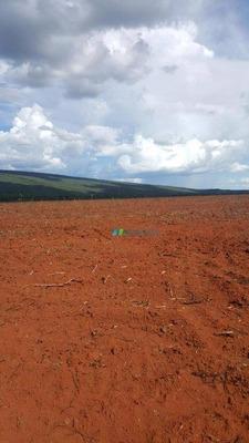 Fazenda Lavoura 204 Ha Região Corinto (mg) - Codigo: Fa0175 - Fa0175